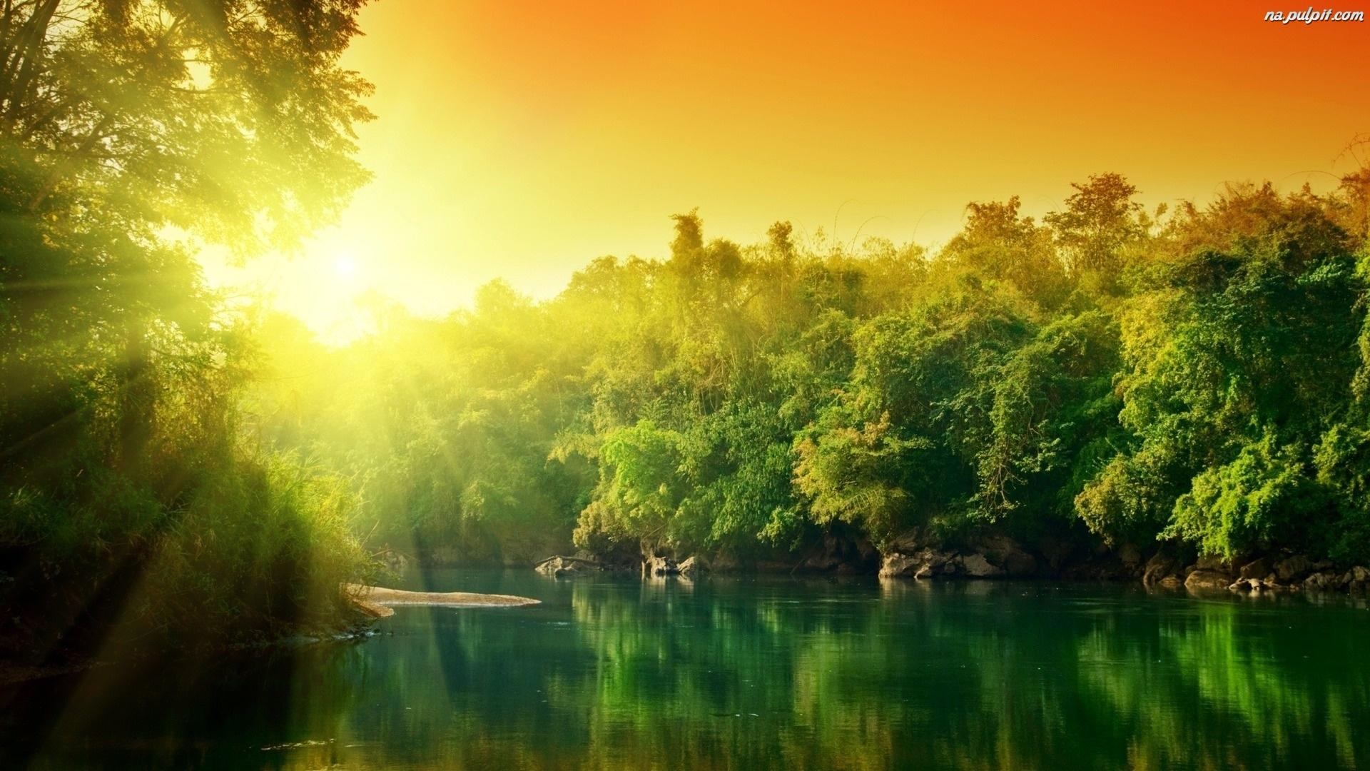 jezioro-drzewa-slonce